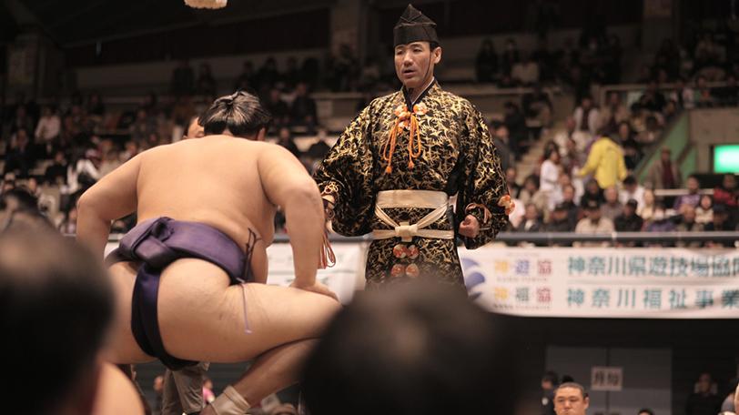 相撲に関係する仕事にはどんなものがあるの?(1/1)|【SPAIA】スパイア