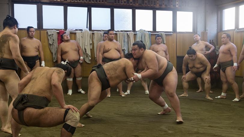 相撲 部屋 一覧