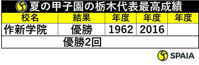 夏の甲子園の栃木代表最高成績