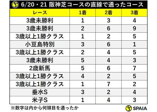6/20・21 阪神芝コースの直線で通ったコースⒸSPAIA