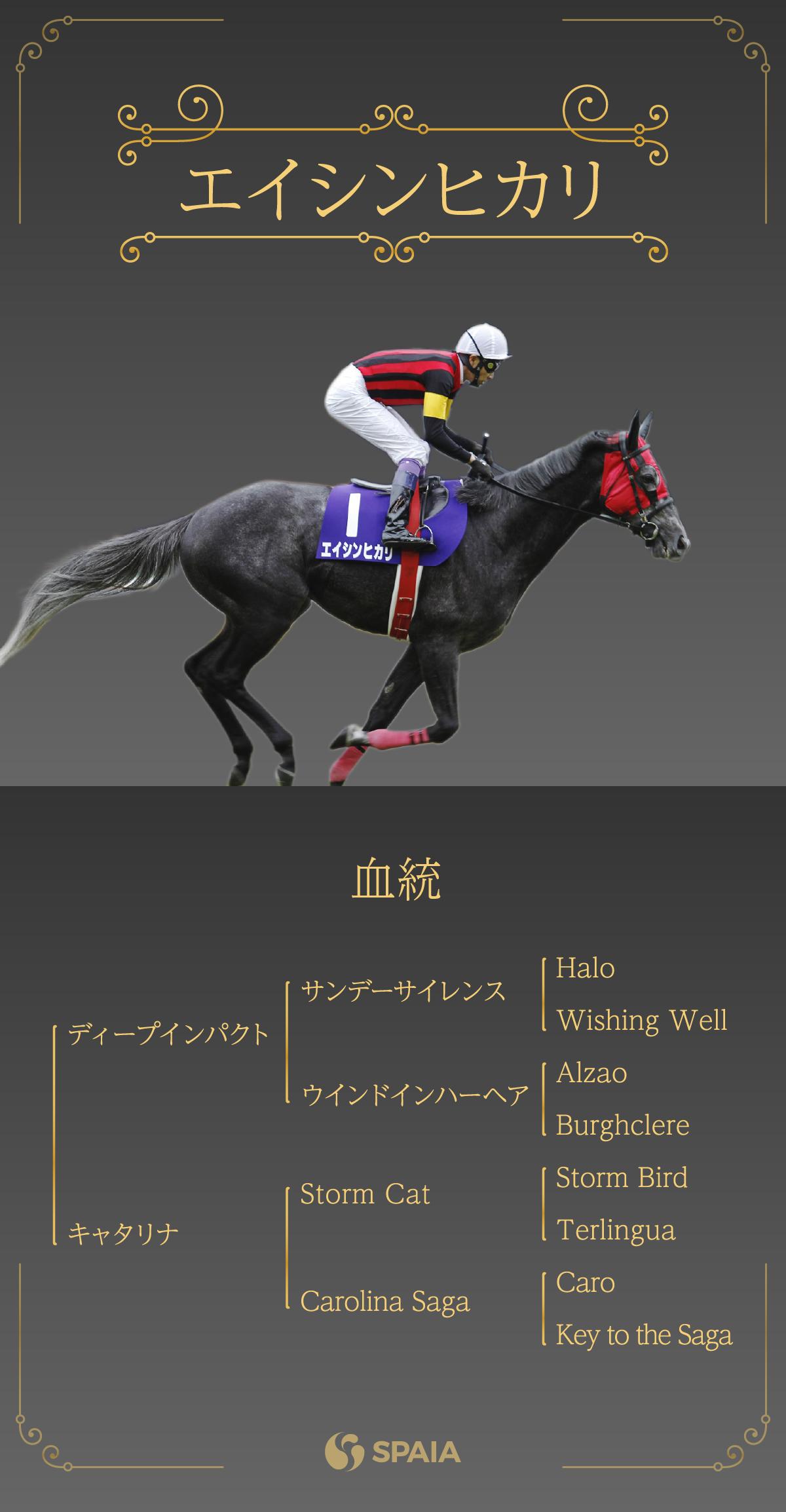 2020年新種牡馬エイシンヒカリ血統