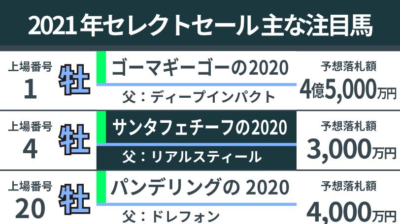 2021年セレクトセールの注目馬,ⒸSPAIA