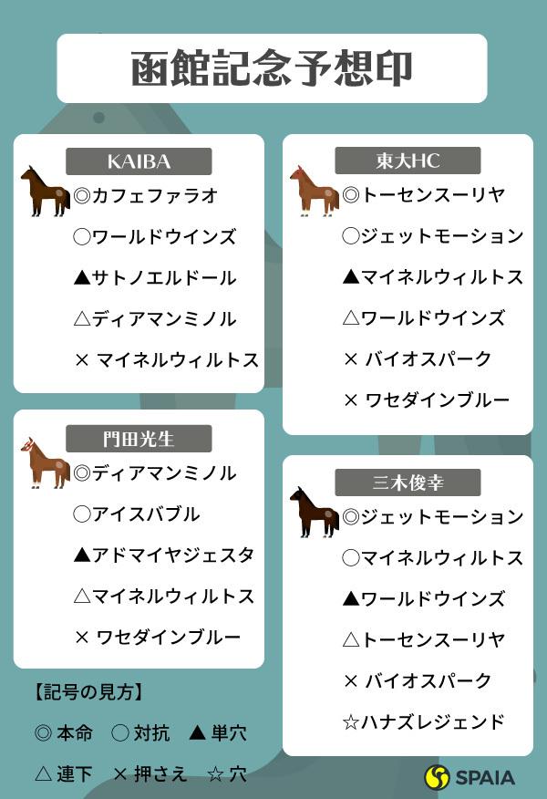 函館記念予想印,インフォグラフィック,ⒸSPAIA