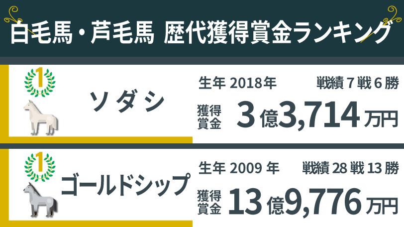 白毛・芦毛馬獲得賞金ランキング,ⒸSPAIA