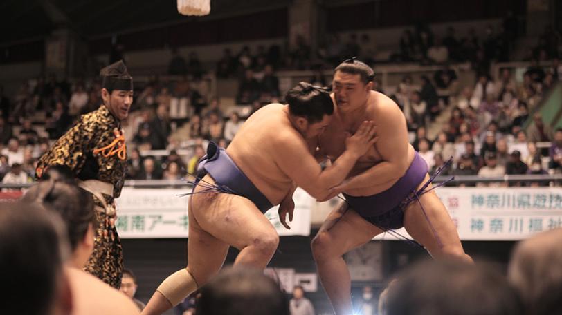 相撲 取り 給料