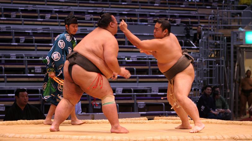 大相撲の珍しい決まり手5つ|【SPAIA】スパイア