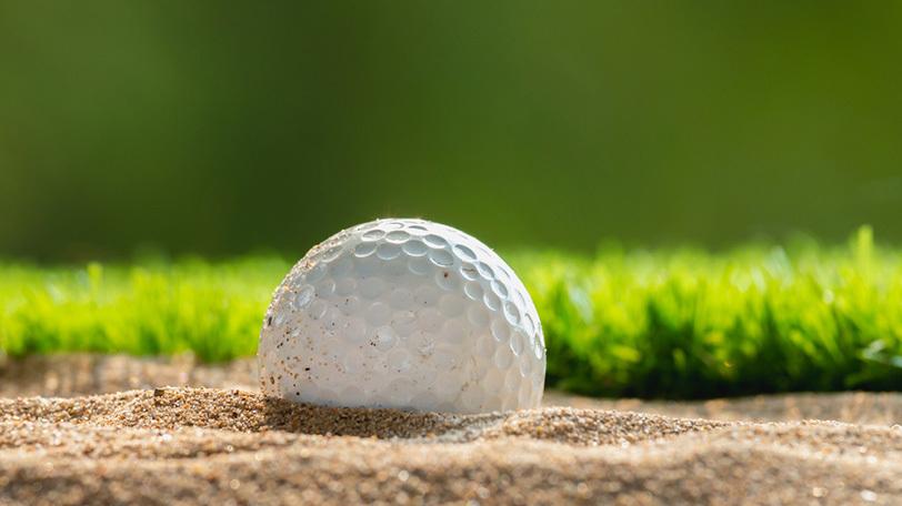 イメージ画像ⒸLamyai/Shutterstock.com