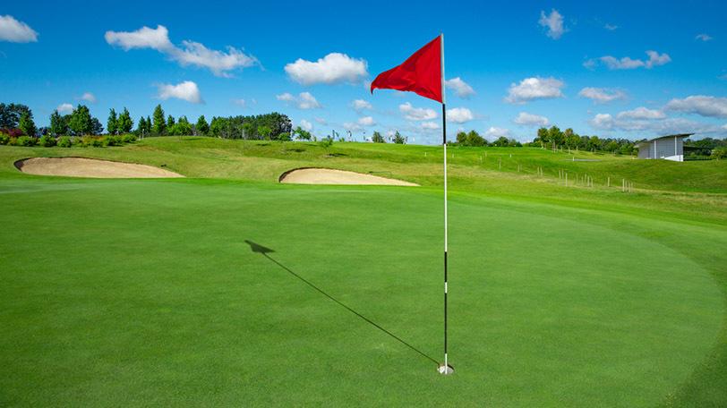 イメージ画像Ⓒnexus7/Shutterstock.com