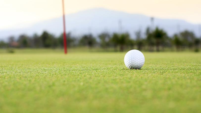 イメージ画像ⒸToa55/Shutterstock.com