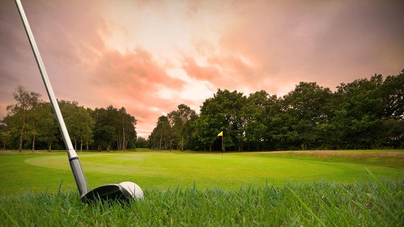 イメージ画像ⒸDJTaylor/Shutterstock.com