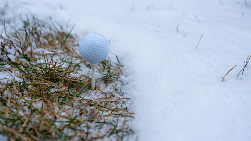 イメージ画像ⒸKirill Skvarnikov/Shutterstock.com