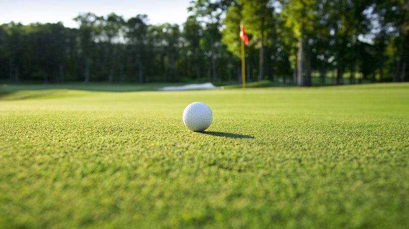 イメージ画像ⒸDan Thornberg/Shutterstock.com